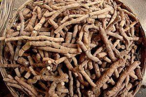 Indian Root Beer